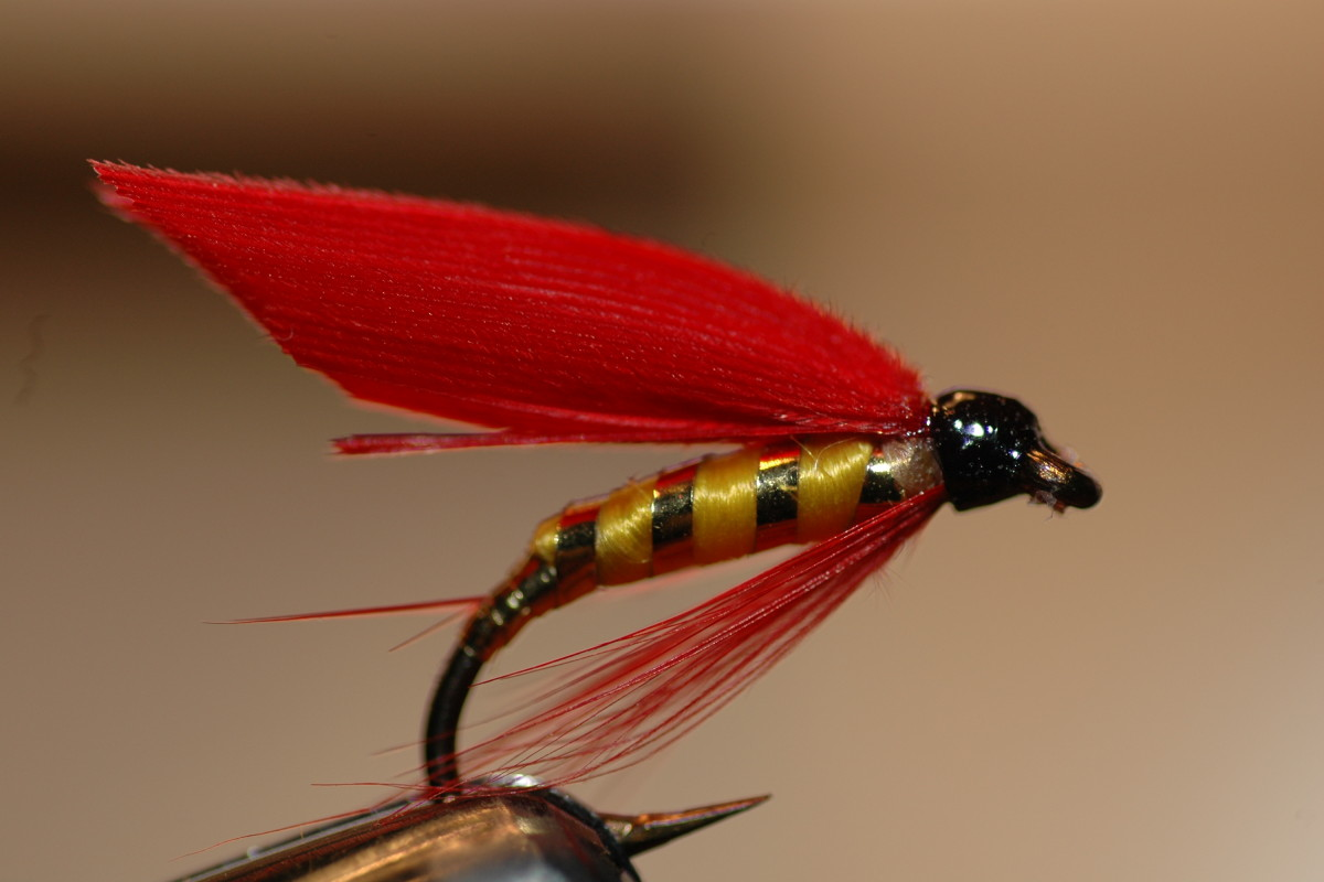Fancy Wet Flies